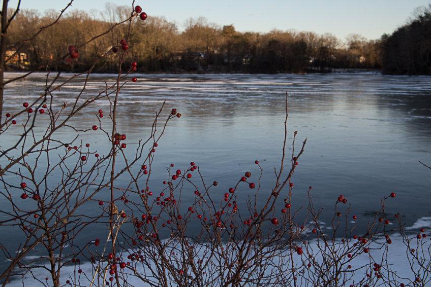 Fancying the Frozen Lake